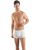 Sea Island Cotton Pant